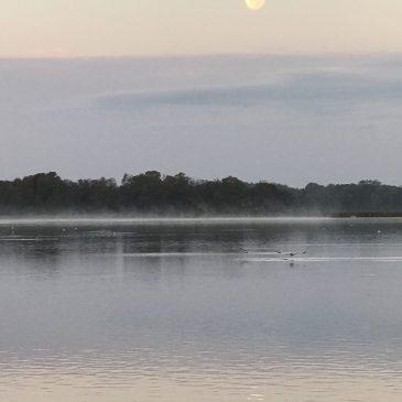 Misty Morning on Lake John – October 2017